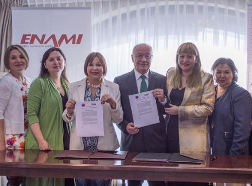 enami-genero-equidad-sernameg