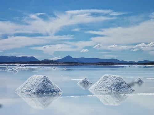 litio-lithium-tesla-ganfeng