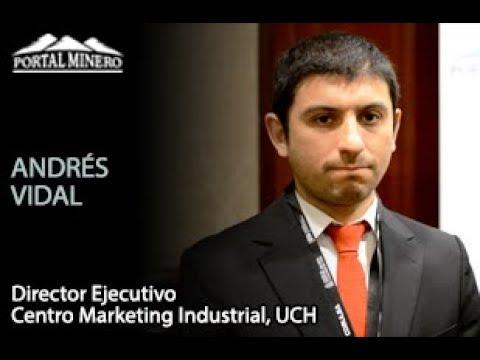 Andrés Vidal, Director Ejecutivo Centro Marketing Industrial, UCH