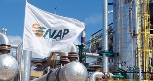 energia-proyecto-enap-central-nueva-era