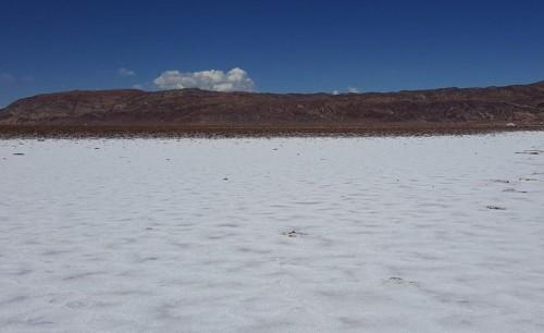 proyecto-litio-lithium-corporation-pozuelos-pastosgrandes