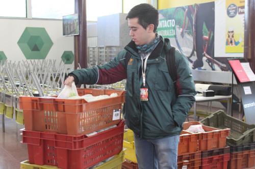 Radomiro Tomic es la primera división de Codelco en utilizar bolsas compostables para sus colaciones
