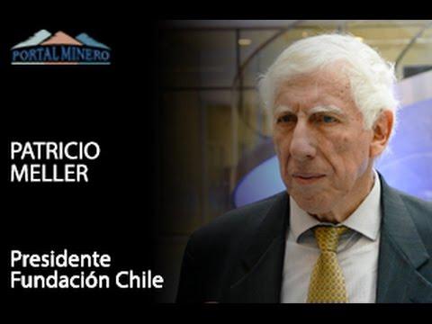 Entrevista de la Semana: Patricio Meller, Presidente Fundación Chile