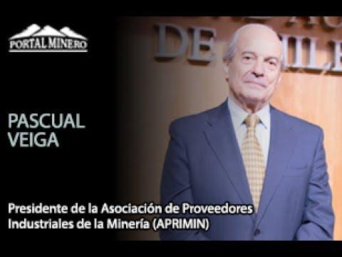 Entrevista de la Semana: Pascual Veiga, Presidente de la Asociación de Proveedores Industriales de l