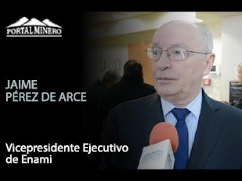 Jaime Pérez de Arce, Vicepresidente Ejecutivo de Enami